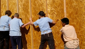 HELPING BUILD